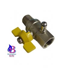 1/2Inch Gas Ball Valve with Test Point M x F